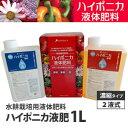 ハイポニカ1L液肥(A・B液2本組) ホームハイポニカ・水耕栽培に 【あす楽】