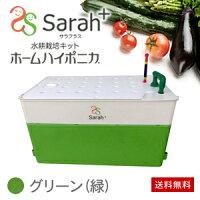水耕栽培キット・ホームハイポニカSarah+(サラプラス)グリーン