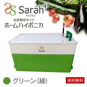 水耕栽培キット ホームハイポニカ Sarah+ (サラプラス) グリーン(緑)