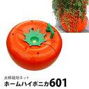 水耕栽培キット ホームハイポニカ601 ハイポニカ肥料付 【あす楽】