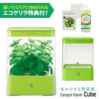 水耕栽培器GreenFarmCube(グリーンファームキューブ)グリーン