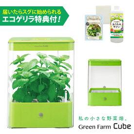 水耕栽培器 GreenFarmCube グリーンファーム キューブ (グリーン) 当店特典付! LED 水耕栽培キット ユーイング H-CB01G1-G1 【あす楽】