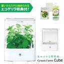 水耕栽培器 Green Farm Cube グリーンファーム キューブ(ホワイト) 当店特典付! LED 水耕栽培キット ユーイング UH-CB01G1 【あす楽】