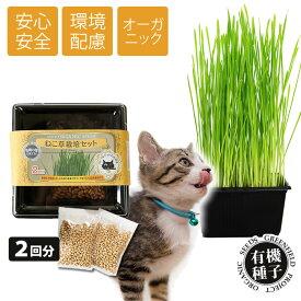 ねこ草 栽培セット オーガニック 種 2回分 有機