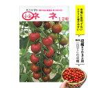 【12時迄で即日発送】 種 ネネ ミニトマト 受粉しなくても実がなる トマト 初めての方にもおすすめ プチトマト タネ 【あす楽】【種の…