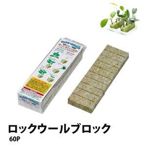 ロックウール ブロック 60P ミネラル豊富 植物用 培地 (30mm角×60個) 簡単 水耕栽培 土栽培 【あす楽】