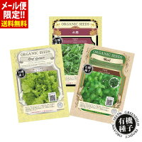 【1000円ポッキリ】種有機種子育てやすい人気3種(リーフレタス・水菜・バジル)