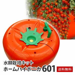 水耕栽培キット ホームハイポニカ601 ハイポニカ肥料付