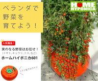 水耕栽培キットホームハイポニカ601