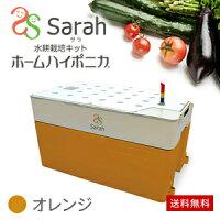 水耕栽培キット・ホームハイポニカSarah(サラ)オレンジ