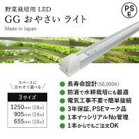 野菜栽培用LEDGGおやさいライト