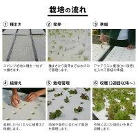 水耕栽培装置DIY組み立てベースキットアマテラス