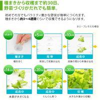 LED水耕栽培器GreenFarmCubeグリーンファームキューブ