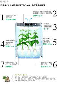 水耕栽培器GreenFarmCubeグリーンファームキューブ