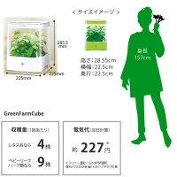 水耕栽培器GreenFarmCube(グリーンファームキューブ)