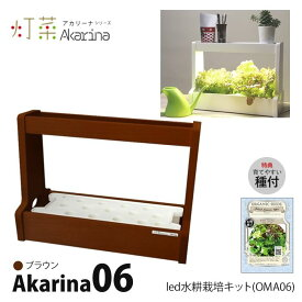LED 水耕栽培 キット Akarina06 アカリーナ OMA06 ブラウン 茶色 木製