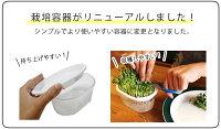 スプラウト栽培容器おうちでベジかいわれタイプ※容器のみ