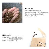 母の日ギフトオーガニック栽培キットバタフライピー