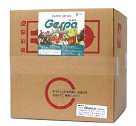 食中毒対策に!幅広いウィルス・細菌に効く除菌剤 ジェスパ 20リットル 送料無料