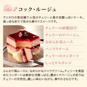 幻のチーズケーキ+プチガトー3種のセット
