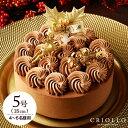 クリスマスケーキ ショコラバリ ノエル(5号:15cm)【冷凍便】【チョコレートケーキ】【送料込】