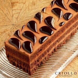 【チョコレートケーキ】ショコラ・ショック 長方形 約2〜3名用 【冷凍便】【あす楽対応】 ▲▲濃厚 美味しい チョコレート 生チョコ チョコケーキ お取り寄せグルメ 誕生日ケーキ 高級 ブ