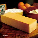NEWチーズケーキ 芳醇なチーズケーキ プレミアム・チーズケーキ(長方形)約2〜3名用【冷凍便】【あす楽対応】 贈り物…