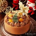 【2020クリスマスケーキ】2人用の華やかでおいしいケーキのおすすめは?