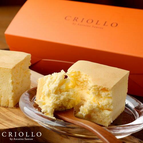 幻のチーズケーキ(長方形)約2〜3名用 【冷凍便】スフレタイプ あす楽対応 お中元
