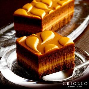 【チョコレートケーキ】キャラメル・ショック キャラメル&チョコケーキ 長方形 約2〜3名用 【冷凍便】【最短2〜3営業日で出荷】チョコレート ギフト お取り寄せグルメ スイーツ 高級 ブラ