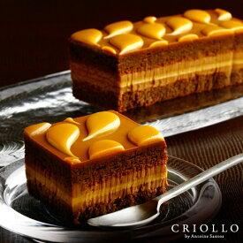 【チョコレートケーキ】キャラメル・ショック キャラメル&チョコレートケーキ 【冷凍便】【あす楽対応】チョコレート キャラメル ギフト 生ケーキ 長方形 敬老の日