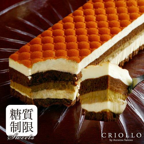糖質制限ケーキ スリム・ティラミス 2〜3名様用【長方形】【冷凍便】