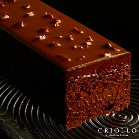 【チョコレートケーキ】 トレゾー・ナチュール 2〜3名様用【常温便】 チョコレート 生チョコ ケーキ お取り寄せ 高級 かわいい お洒落 有名パティシエ 濃厚 美味しいチョコ 2020 バレンタイン チョコ