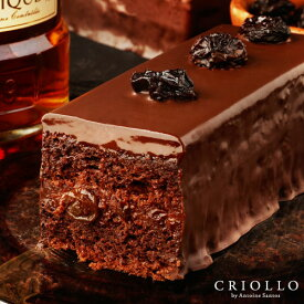【チョコレートケーキ】 トレゾー・ラムレーズン 2〜3名様用【冷凍便】チョコレート 生チョコ ケーキ お取り寄せ 高級 かわいい お洒落 有名パティシエ 濃厚 美味しいチョコ 御歳暮 お歳暮