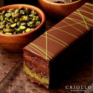 【チョコレートケーキ】トレゾー・ピスターシュ・プレミアム 2〜3名様用【冷蔵便】 ▲▲ギフト チョコレート 生チョコ ケーキ お取り寄せグルメ 高級 かわいい お洒落 有名パティシエ 濃厚