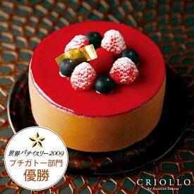 【チョコレートケーキ】ニルヴァナ4号(直径12cm)ブラックベリーとチョコレート【冷凍便】【あす楽対応】約2〜4名様向けバースデー 誕生日 プレゼント ギフト 結婚記念日 クリスマス 2019 Xmas お取り寄せ