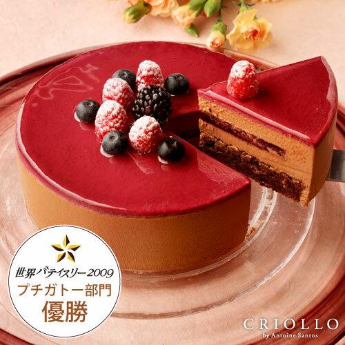 【チョコレートケーキ】ニルヴァナ5号(直径15cm)約4〜6名様向け ブラックベリーとチョコレート【冷凍便】【あす楽対応】 卒業 入学 入園 入社 母の日