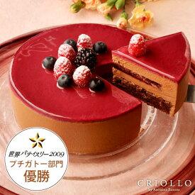 【チョコレートケーキ】ニルヴァナ5号(直径15cm)約4〜6名様向け ブラックベリーとチョコレート【冷凍便】【あす楽対応】バースデー 誕生日 プレゼント ギフト 結婚記念日 敬老の日