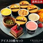サントスシェフのプレミアムアイス10個セット【冷凍便】