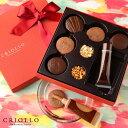 バレンタイン チョコレート 好みにアレンジ パレット・ショコラ【常温便】【チョコレート】サブレ15枚 ショコラ キャ…