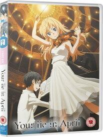 四月は君の嘘 コンプリート DVD-BOX2 (12-22話) アニメ 君嘘 輸入版 DVD
