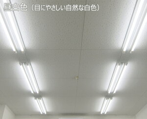 40形ランプセット防雨2灯式16.8W昼光色/昼白色/電球色LEDベースライト器具屋外防水防塵耐塩害低温冷蔵寒冷地LED蛍光灯40W型低ノイズフリッカーレス日本製【国内メーカー】日本エコテック(ECB-B402KECA-K401606)5%OFFクーポン配布中!