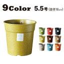 【おしゃれ 植木鉢 5〜5.5号】Grower16A (グロワー16A) / ecoforms (エコフォームズ)【室内・屋外】