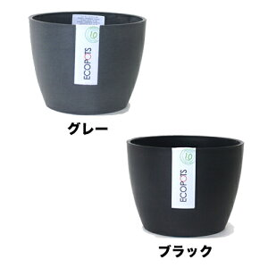 ECOPOTS   ECOPOTS5   植木鉢   5.3号  5号〜6号