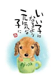 スミレとぉちゃんのメッセージはがき 犬シリーズ | ダックスフント 【メール便対応】【 葉書 和製はがき ポストカード メッセージカード 癒し 和み 言葉 絵 】