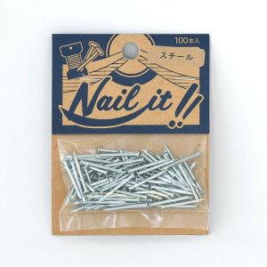 ネコポスOK ストリングアート ネイルイット Nail it 釘 袋入り 100本 スチール シルバーカラー ナチュラル カラーくぎ クギ 手作り ハンドメイド DIY