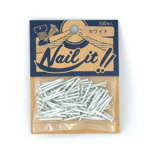 ネコポスOK ストリングアート ネイルイット Nail it 釘 袋入り 100本 ホワイト ナチュラル カラーくぎ クギ 手作り ハンドメイド DIY