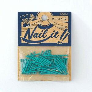 ネコポスOK ストリングアート ネイルイット Nail it 釘 袋入り 100本 ターコイズ ナチュラル カラーくぎ クギ 手作り ハンドメイド DIY