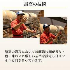 AKURAアワード金賞ワイン女性が選ぶ人気のワインエーデルワインシルバーツヴァイゲルトレーベ2014赤国産ワイン日本ワインお中元ワイン辛口飲みやすい