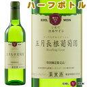 五月長根葡萄園 リースリングリオン 白 ハーフサイズ 受賞ワイン ワイン やや辛口 エーデルワイン 日本ワイン 岩手